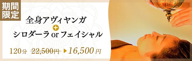 【人気No.1】選べる限定キャンペーン